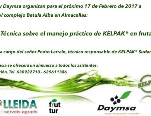 Xerrada de Kelpak a càrrec de Pedro Larrain (Chile)